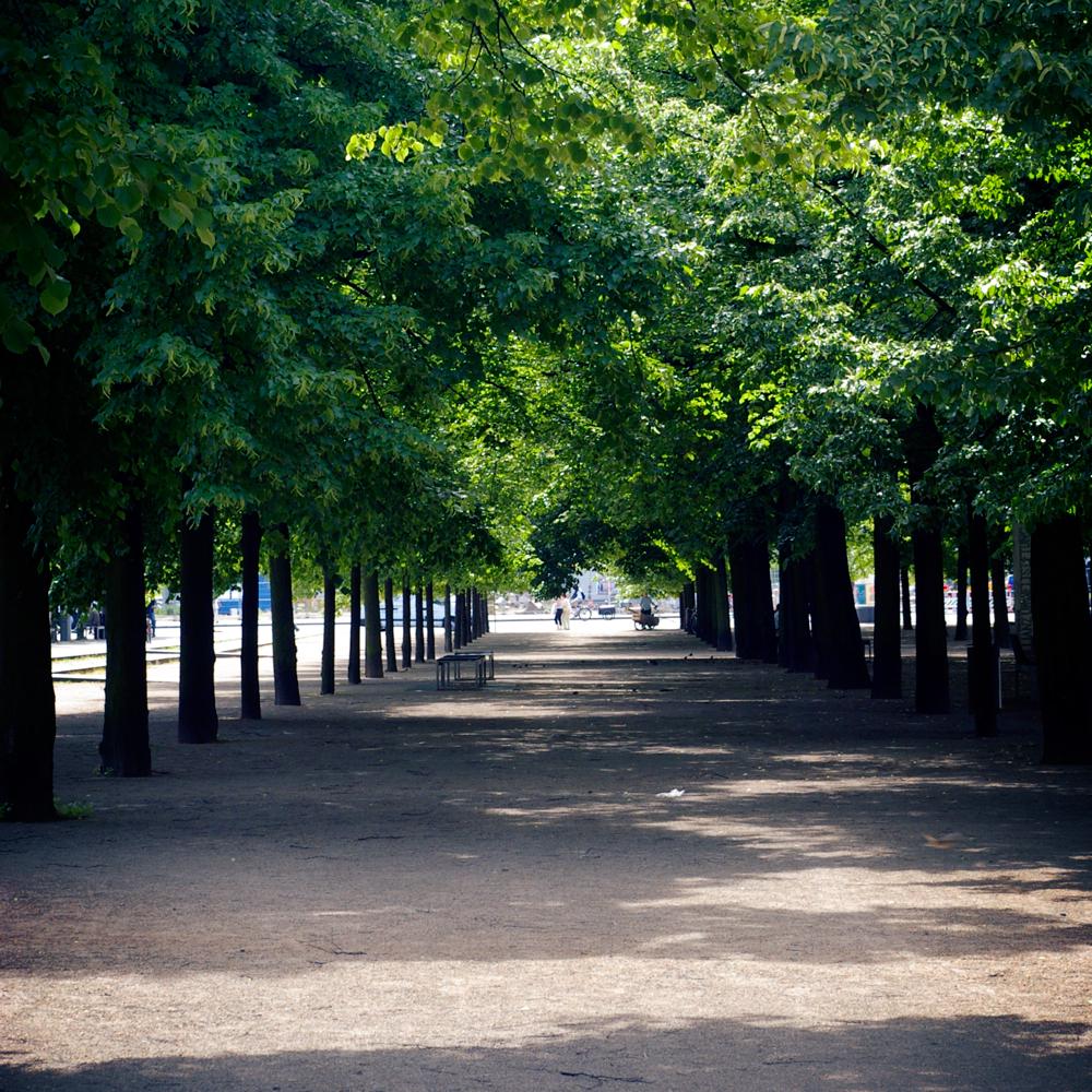"Der ""Lustgarten"" in Berlin"